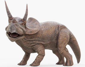 Triceratops Rigged 3D asset realtime