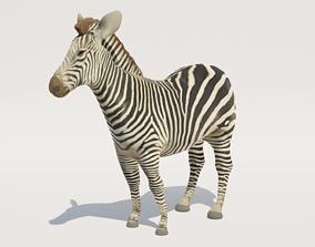 Low-Poly Zebra 3D model
