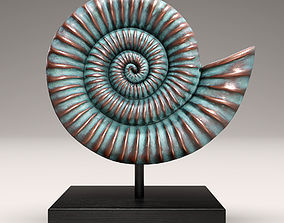 3D ammonite shell