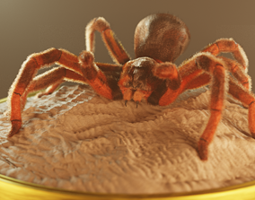 creature Spider 3d Model rigged realtime