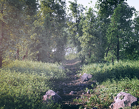 3D model Forest Scene
