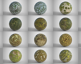 3D model 18 Seamless Mossy Surfaces PBR Volume 2