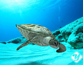 animated Sea Turtle for 3ds Max