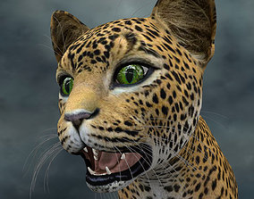 3D model cats UVWC-010 Cat Textures Only