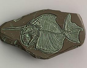 Fossil Series - Pisces monoceros 3D print model