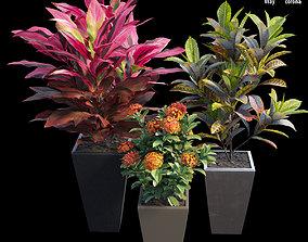3D Pots and Planters set 01