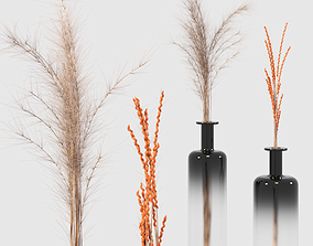 Decorative set of dry wind and ears of wheat 3D