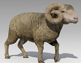 3D model game-ready Ram Animated