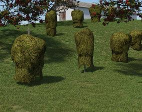 Historic hay rack 3D model