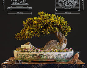 3D model Bonsai interior